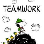 peanuts.teamwork