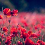 3 cose per dimostrare il tuo sostegno a chi soffre di problematiche psicologiche